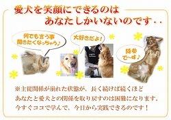 犬のしつけ春川02.jpg